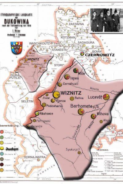 ויזניץ Wiznitz